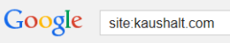 google-search-site-basic1