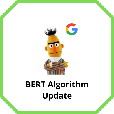 BERT Algorithm Update