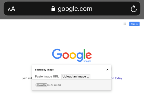 Reverse Image Search on Browser