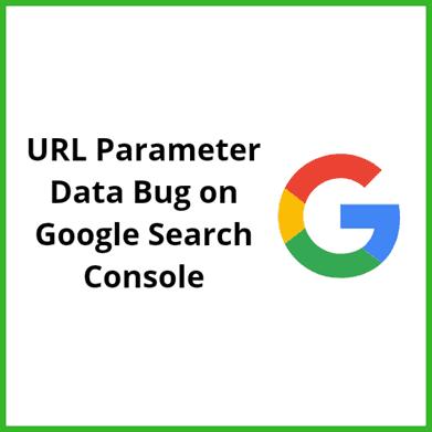 URL parameter Data Bug