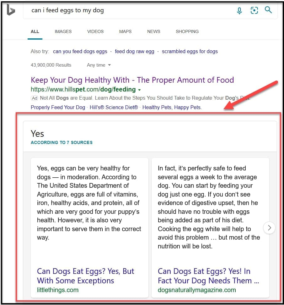 Bing Updated Search Results