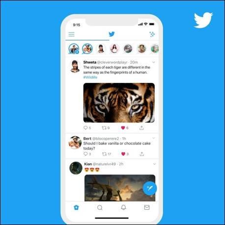 Twitter Fleet on Home Screen