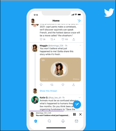 Once voice tweets are published, it will be visible to all your followers