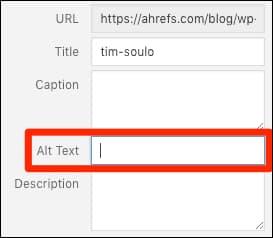 Alt text field