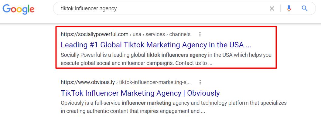 Tiktok Influencer Agency